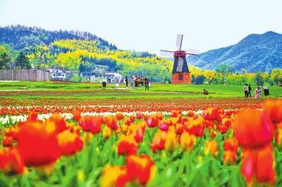 描写春天的优美短句,信阳赏春欲何往 山山水水俱欢颜