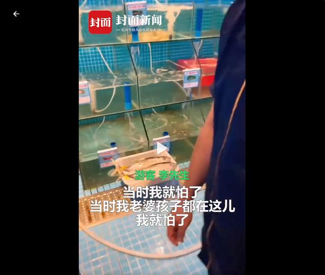 """震惊!游客称三亚吃海鲜遭遇宰客:6只海胆蒸蛋光有蛋没有海胆,还被威胁""""不要闹事,不然走不掉"""" 全球新闻风头榜 第7张"""