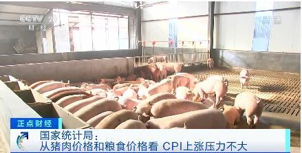 权威解读!国家统计局:从猪肉价格和粮食价格看 CPI上涨压力不大