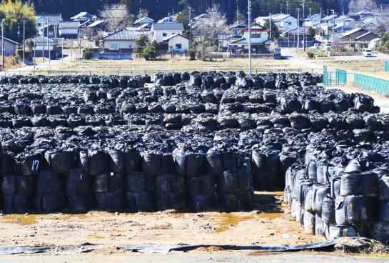 1.3万处辐射量未下降!福岛核事故除污工作调查结果出炉 全球新闻风头榜 第1张
