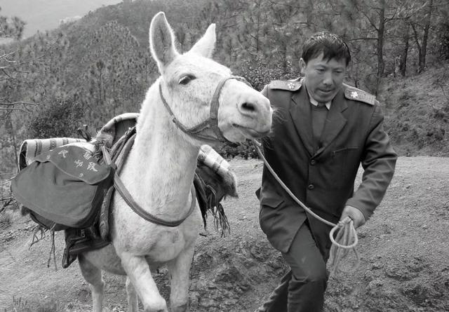 感动中国的邮递员王顺友去世 其儿子回忆:突然去世,生前状态不错 全球新闻风头榜 第1张