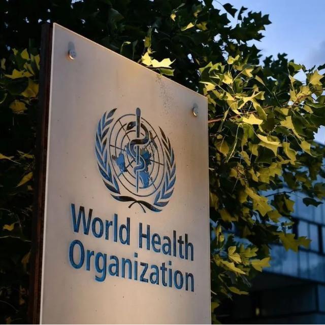 世卫组织要求:重检 全球新闻风头榜 第1张