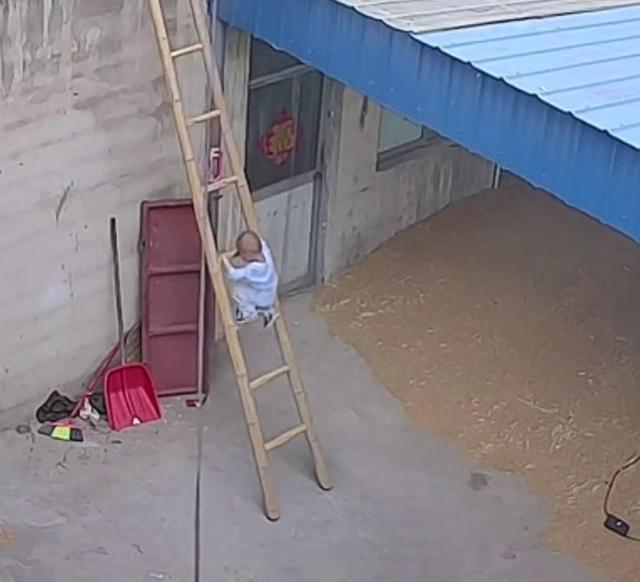 小宝宝尾随爸爸爬上梯子险些掉下,网友:隔着屏幕都害怕 全球新闻风头榜 第2张