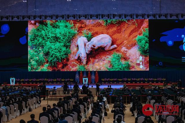 联合国生物多样性昆明大会开幕 全球新闻风头榜 第4张
