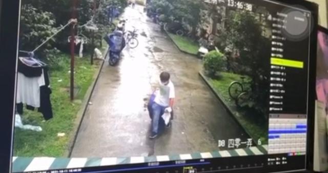 上海一女子失联被装行李箱抛尸?警方回应称已抓获犯罪嫌疑人