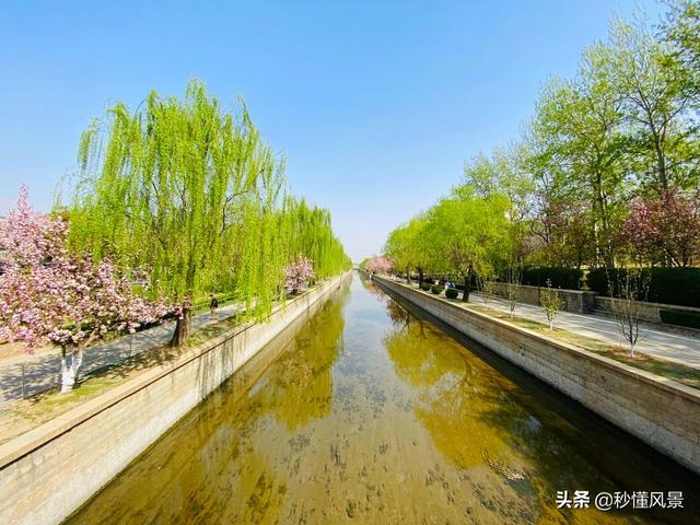 北京花卉,北京闹市区,免费赏花好去处,古色古香地铁直达知道的游客不多
