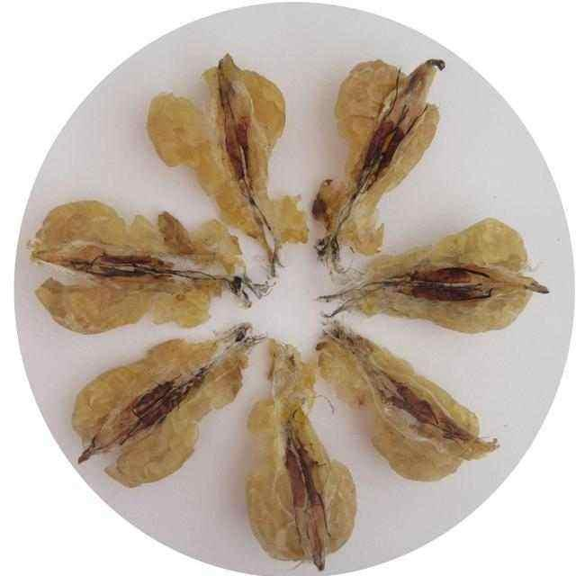 林蛙的吃法,教你怎么把大补的雪蛤,做得又营养又好吃