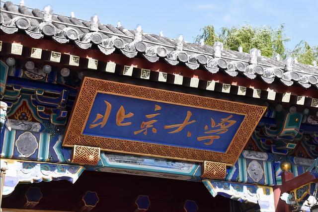 柳智宇最新消息,北大数学天才柳智宇,天赋卓绝,父母寄予厚望,毕业决定让人惊讶