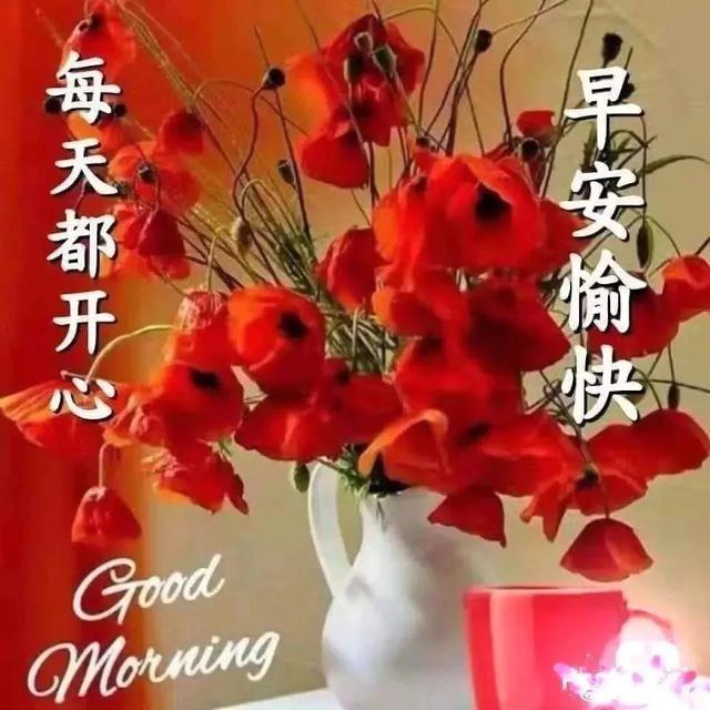 清晨的阳光唯美句子,祝福就是一颗心将另一颗心照亮,祝幸福安康,早上好