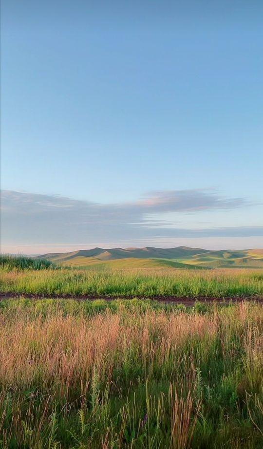 内蒙古大草原图片,内蒙古呼伦贝尔大草原美景欣赏(十一)