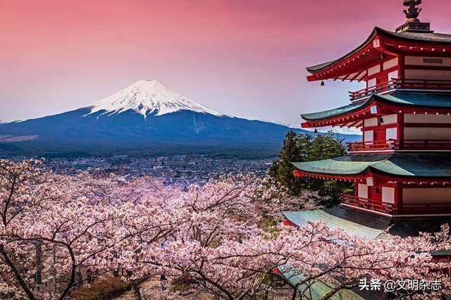 樱花的寓意,日本樱花:从土俗信仰到美丽象征
