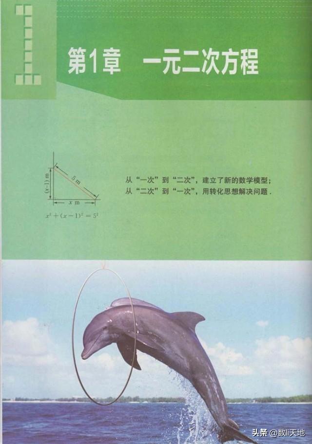 2020秋苏教版数学九年级上册电子课本