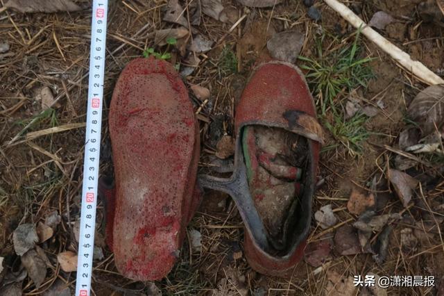 宁夏一荒草地发现一具女性尸骨,警方已确认其身份:排除刑事案件,系非正常死亡 全球新闻风头榜 第3张