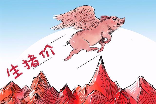 """生猪价格""""闪崩""""市场行情下挫加重!3个噩耗!猪价上涨或将受到"""