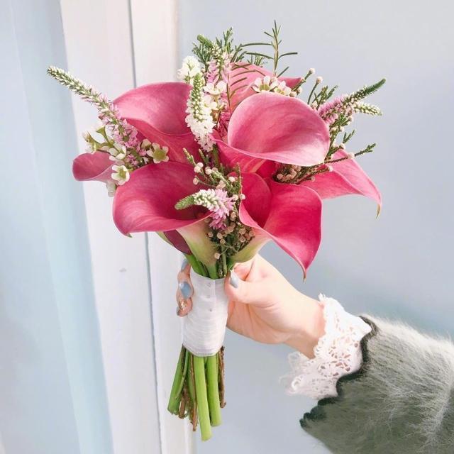 感恩母爱最朴实的句子,母亲节赞扬母爱祝福词,简短创意,妈妈节日快乐