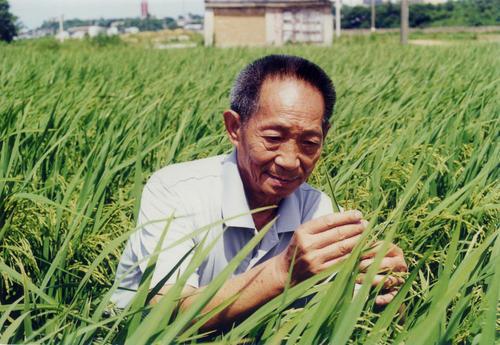 坚持不懈的名人,悲痛!3位90多岁的伟人逝世!吴孟超九旬高龄仍坚持替人治病