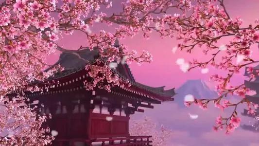 桃花的唯美句子,古诗词里赏桃花,花开逾越整个春季,惊艳偌大人间