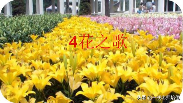 部编版六年级语文上册第4课《花之歌》课件(附实景朗诵)