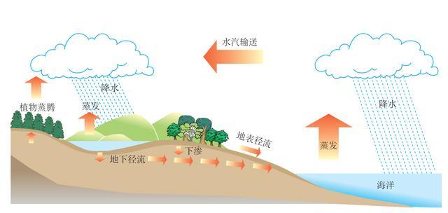 讲义 第三章 地球上的水3.1水循环及水量平衡