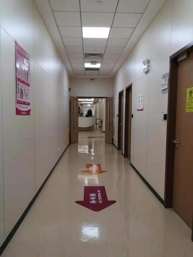 试管婴儿 移植,上海集爱试管进行时:移植术