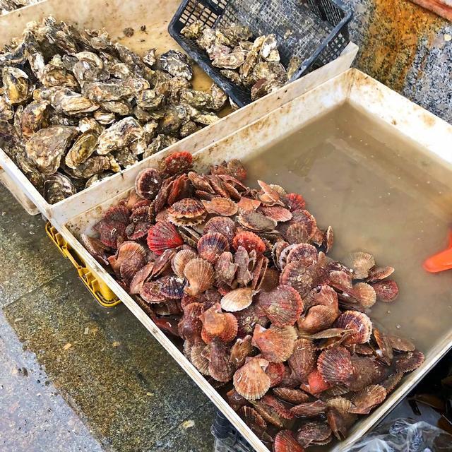八爪鱼的做法大全,夏季吃啥海鲜最肥美?老渔民半辈子总结,还有地道做法,赶紧收藏