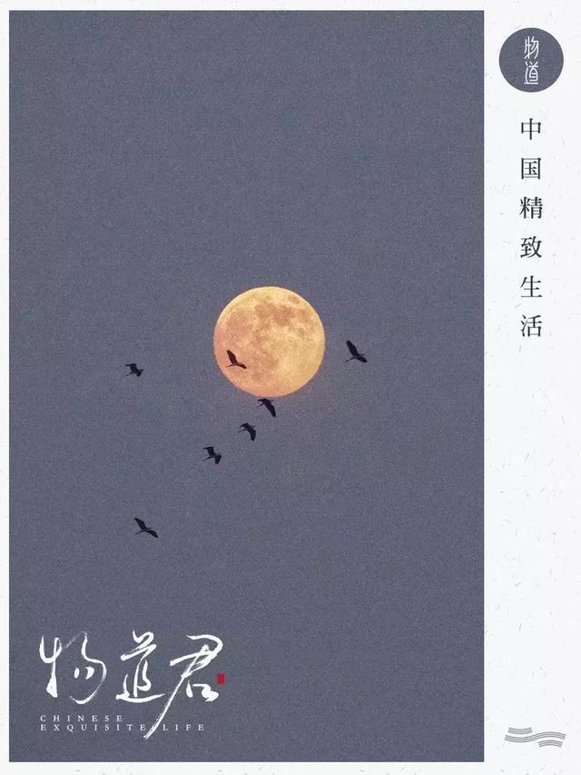 关于月亮的古诗,中国五大最美赏月诗词