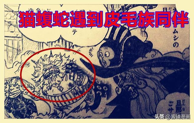海贼王在线漫画,海贼王1012话,暴走的猫蝮蛇vs7亿的佩罗斯佩罗,传次郎行踪成谜