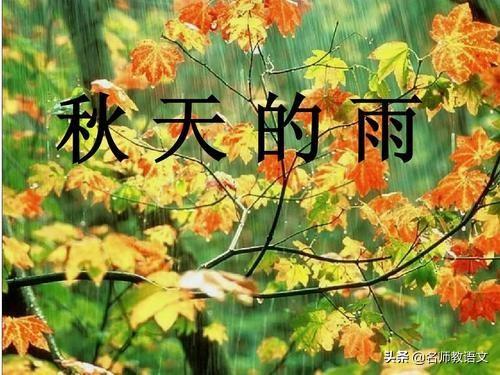 雨的句子,《秋天的雨》句子仿写,坚持天天练,作文就不难