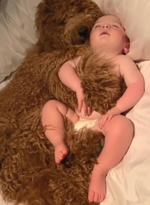 婴儿 狗,放宝宝和狗子单独在家,推开门一看不忍心打扰:太暖心了吧?