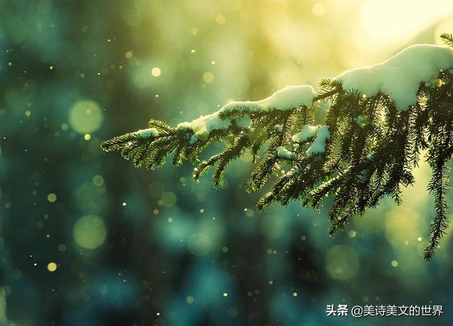 武汉的诗,知名作家助力抗疫,在武汉写下这首感人诗,开篇7个字就令人落泪