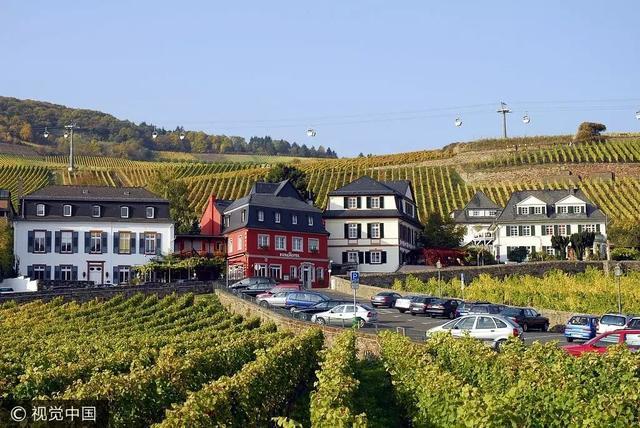 浪漫庄园 奶酪:陪家人巡游莱茵河,两种浪漫,在庄园与都市间切换,邂逅多面欧洲