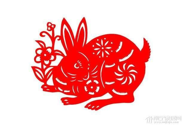 包含2018年的生肖兔运程的词条-第6张图片-天下生肖网