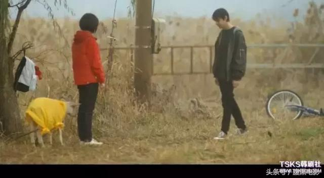 韩式初恋的范本,真的很无邪很闷骚——《文集》