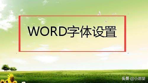 """办公软件入门到精通,入门篇:WORD文本美颜----""""字体设置"""""""