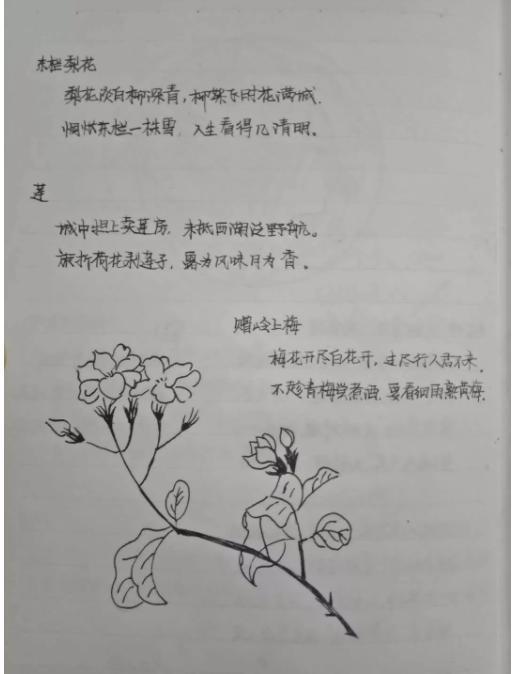 """高清曝光!又一高校""""天神笔记""""强势来袭,网友:膜拜!真学霸!"""
