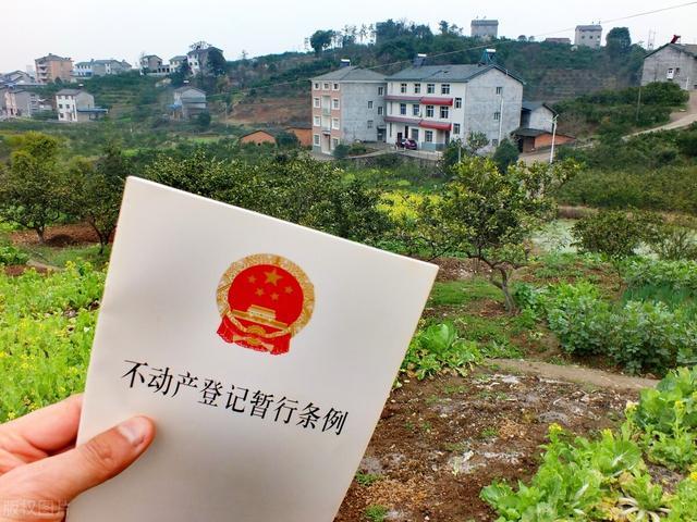 """土地新规来袭:""""5清亮""""、""""6处分"""",9月1日实走,农民仔细"""