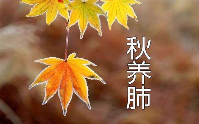 天氣轉涼了,肝病患者秋季護肝的6大原則,<b><a href=