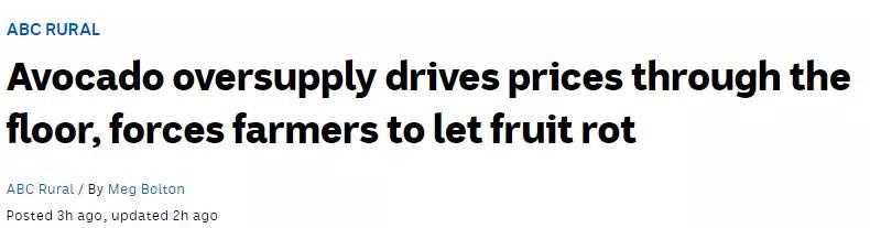 澳洲这种超级蔬果价格暴跌!曾经一个卖5澳元,如今烂树上卖不出