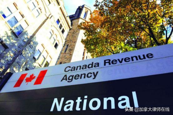 该如何应对?加拿大个税占比高达49.9%?
