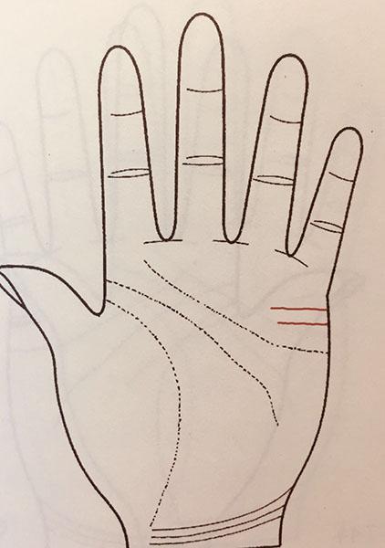 手掌解析运势图婚姻(手掌纹路运势解析)-第5张图片-天下生肖网