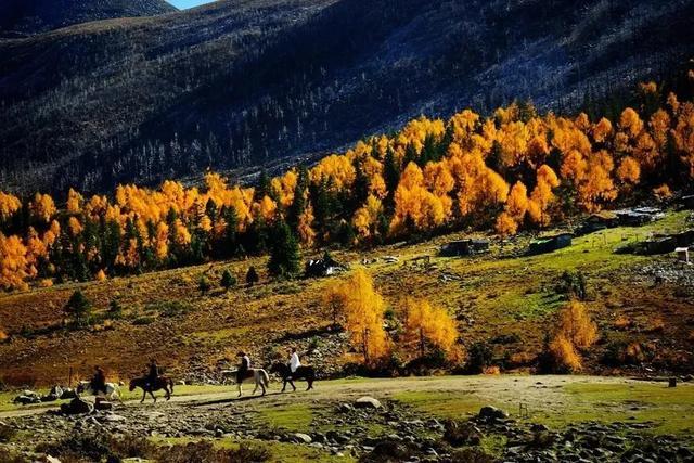 这就是四川的秋天!30处赏秋宝地,挑前收藏