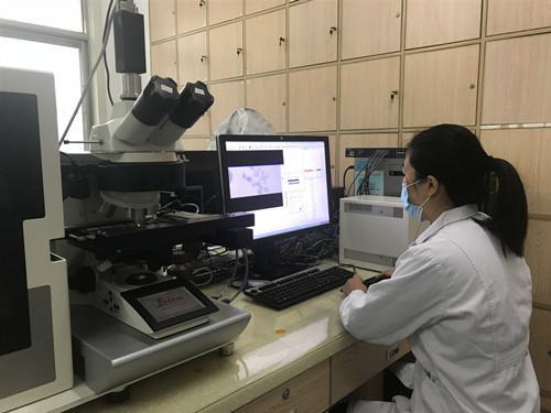 前10个月,济宁确诊染色体异常
