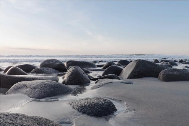 垃圾发电:蓝海照样红海?