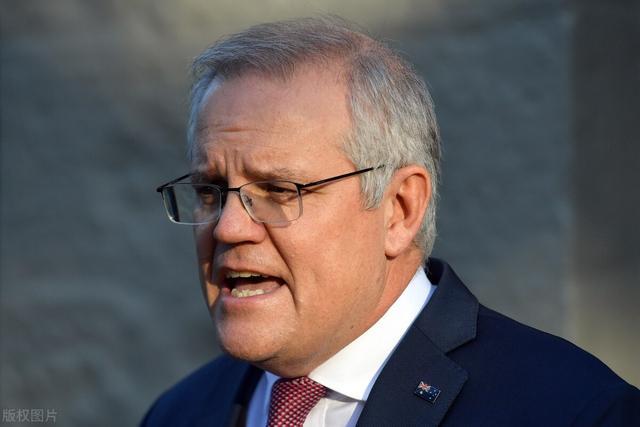 澳大利亚向中国求援!万亿吨粮食滞销,滋生数十亿鼠患农民破防