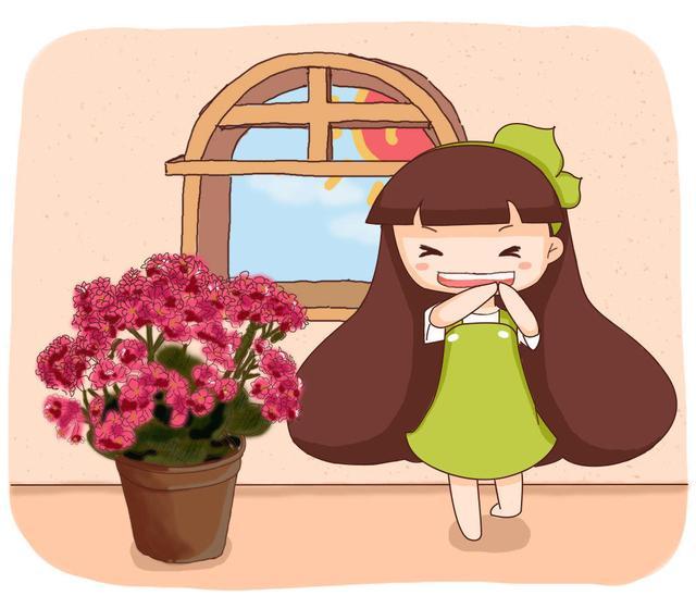 一年四季都开花,长寿花家庭养护手段,密密麻麻真时兴