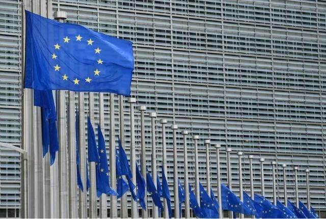 """欧盟27国力挺法国,出手""""教训""""澳洲,英官员警告:法或弃美亲华"""