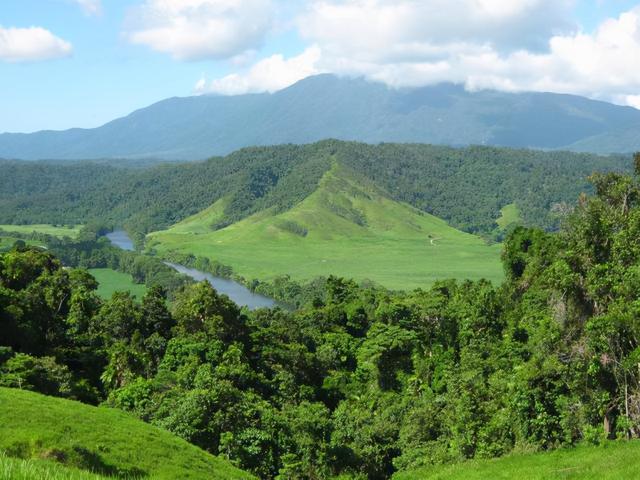 已有1.3亿年历史,澳大利亚的丹特里雨林又回到了土著居民的手中