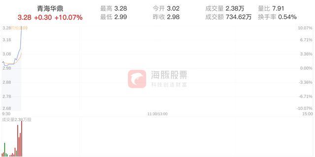 青海华鼎盘中涨停,报价3.28元
