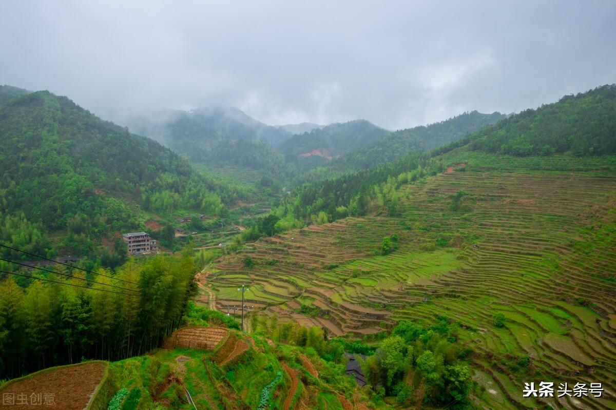农村土地广阔,合理利用效益最大化,哪几种种植模式却备受欢迎?