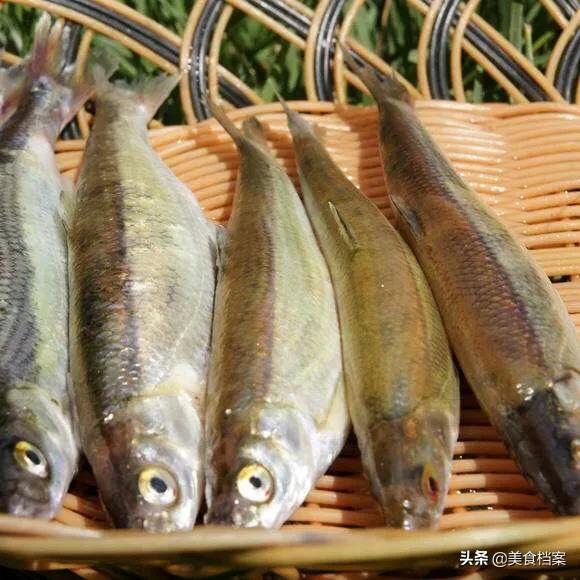 鱼有哪些种类(鱼有哪些做法)插图9